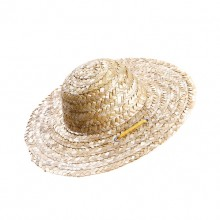 Pet Primary Color Retro Farmer Straw Hat