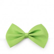 Solid Green Pet Bow Tie
